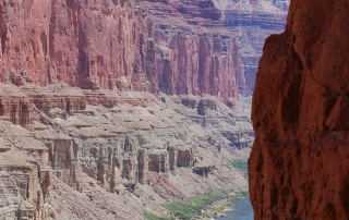 Colorado River raft trips